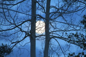 lenahan-beautiful-moon-2